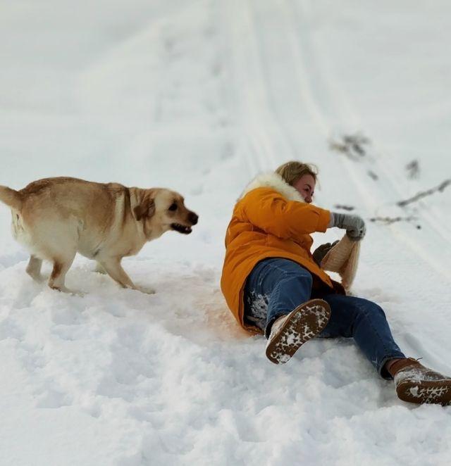 Что нужно пережить, чтобы сделать красивое, зимнее фото с собачкой