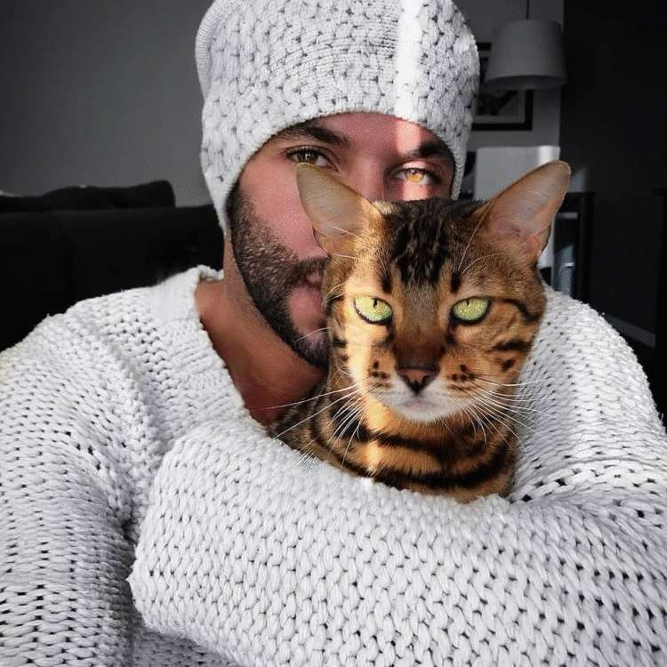 Между мужчинами и котами существует особенная связь: 25 фотодоказательств этому
