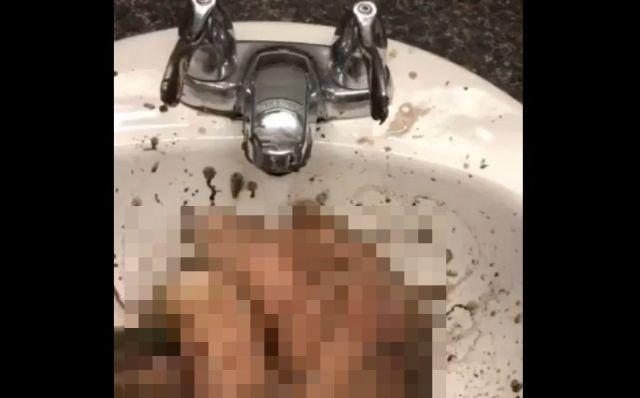 Как правильно мыть руки, чтобы не подцепить коронавирус