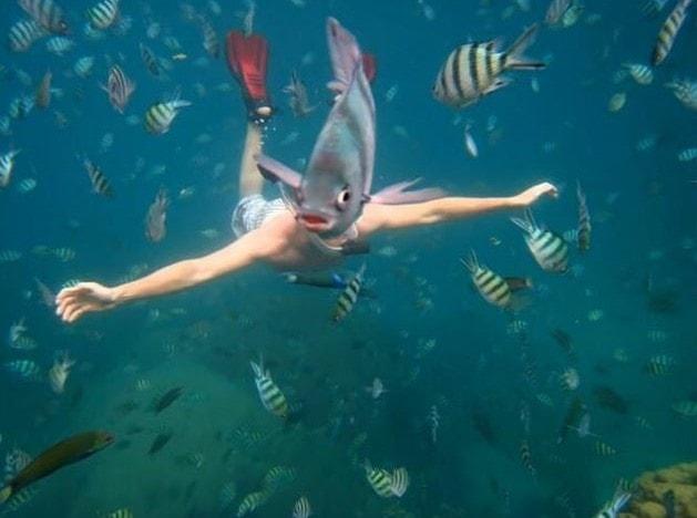 20 сумасшедших и невероятно удачных фотобомб – очень забавные кадры!