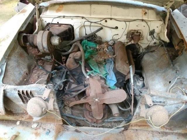 На американской свалке догнивают раритетные машины - каждую из них можно купить за копейки (25 фото)