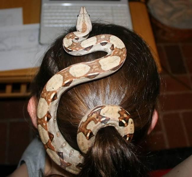 Змея на голове