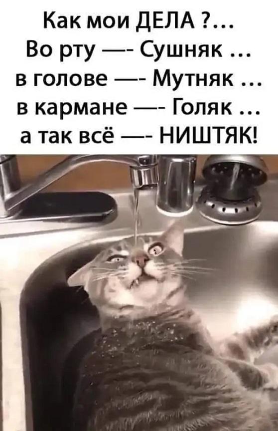 Подборка картинок. Вечерний выпуск (31 фото) - 09.10.2020