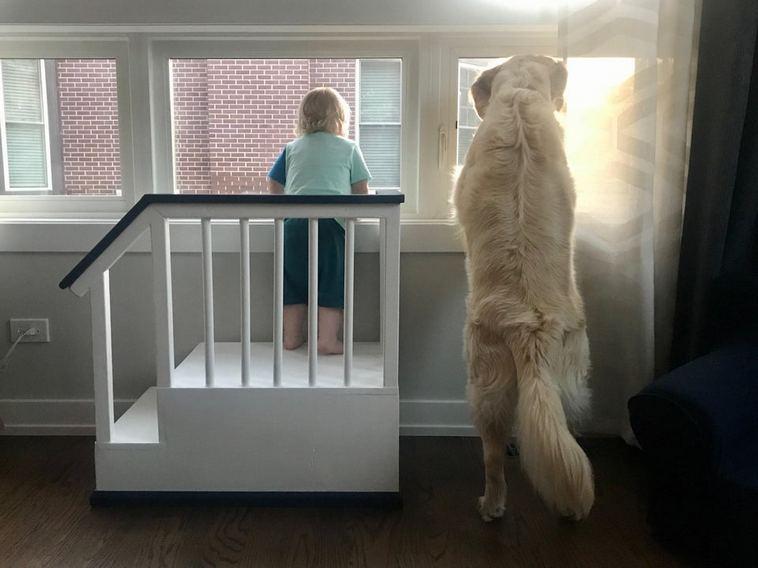 17 душевных снимков, которые покажут настоящую дружбу между ребенком и домашним питомцем