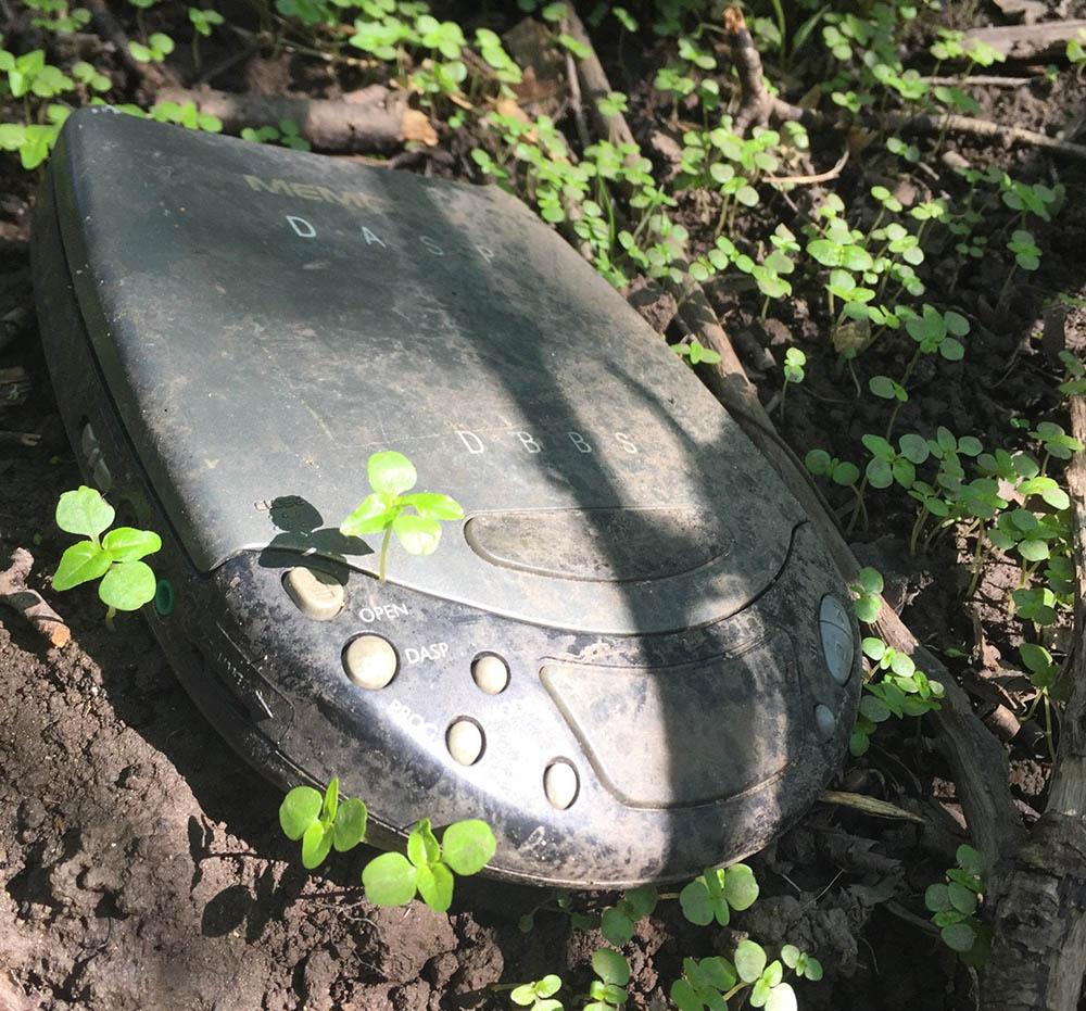 17 неожиданных и признаться честно – пугающих находок в лесной чаще