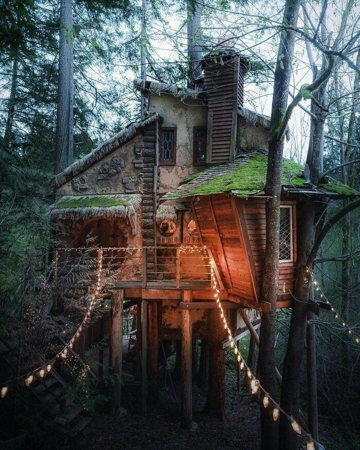 18 потаенных домиков на природе, куда люди сбегают от суеты и проблем