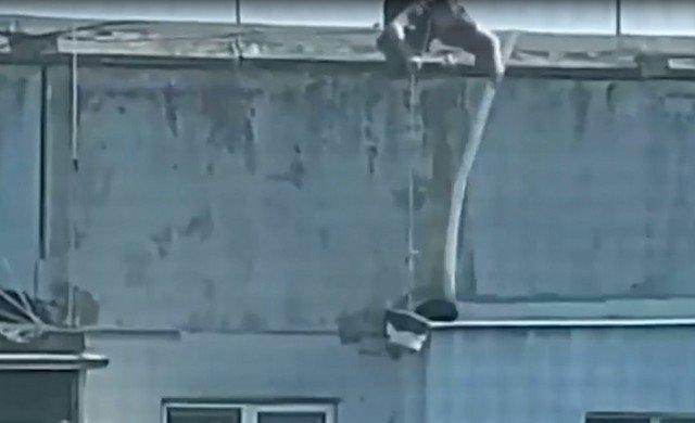 Житель Новороссийска провернул спецоперацию, чтобы спасти кота