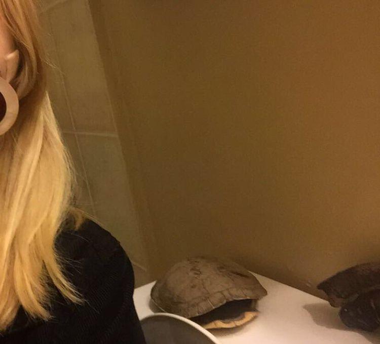 19 сюрпризов в ванных комнатах – девушки заглянули в мужские уборные и обомлели